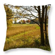 Fall Day In The Ozarks Throw Pillow