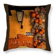Fall Decoration Throw Pillow