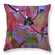 Fall Dogwood Leaf Colors 2 Throw Pillow