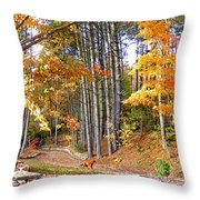 Fall Driveway And Coco The Dog Throw Pillow