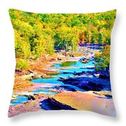 Fall Drought @ Ashokan Throw Pillow