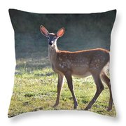 Fall Fawn Throw Pillow