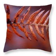 Fall Fern Throw Pillow