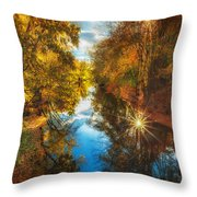 Fall Filtered Reflections Throw Pillow by Sylvia J Zarco