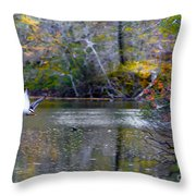 Fall Flight Throw Pillow