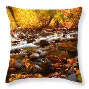 Fall Flow At Mcgee Creek Throw Pillow