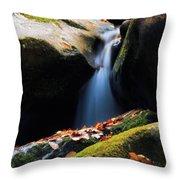 Fall Flow Throw Pillow