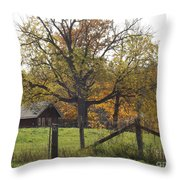Fall Foilage In Country Throw Pillow