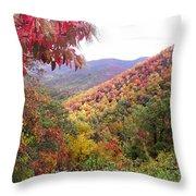 Fall Folage Along The Blueridge Throw Pillow