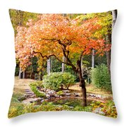 Fall Folage And Pond 2 Throw Pillow