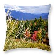 Fall Foliage 2 Throw Pillow