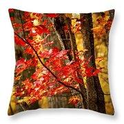 Fall Forest Detail Throw Pillow