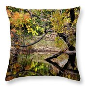 Fall From The Water Throw Pillow