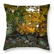 Fall Gate Throw Pillow