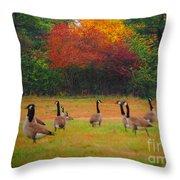 Fall Geese Of Washington Throw Pillow