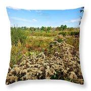 Fall Goldenrod Field Throw Pillow