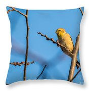 Fall Goldfinch Throw Pillow