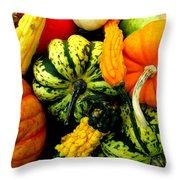 Fall Gourds Throw Pillow
