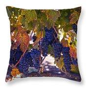 Fall Grape Harvest Throw Pillow