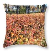 Fall Hedge Throw Pillow