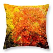 Fall In Full Bloom Throw Pillow