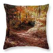 Fall In Johnston County Throw Pillow