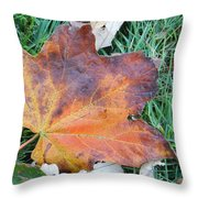 Fall In Leaf Throw Pillow