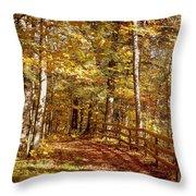 Fall In Michigan Throw Pillow