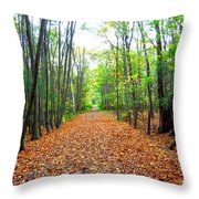 Fall In New England Throw Pillow by Stephen Melcher