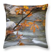 Fall In Nh 1 Throw Pillow