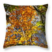 Fall In Nh 2 Throw Pillow