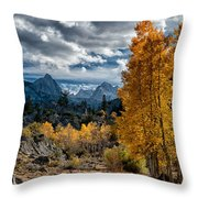 Fall In The Eastern Sierra Throw Pillow by Cat Connor