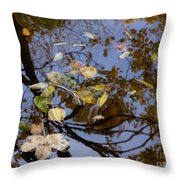 Fall In The Lake In Vienna No. 1 Throw Pillow