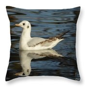 Fall In The Lake In Vienna No.2 Throw Pillow