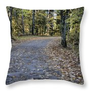 Fall In The North Woods Throw Pillow