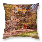 Fall In The Ozarks Throw Pillow