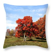 Fall In The Pastures Throw Pillow