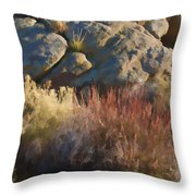 Fall In The Santa Rosas Throw Pillow by Scott Campbell