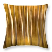 Fall In The Wasatch Throw Pillow