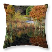 Fall In The Wetlands Throw Pillow