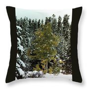 Fall Into Winter Throw Pillow