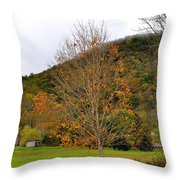 Fall In Virginia Throw Pillow by Todd Hostetter