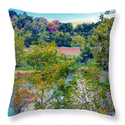 Fall In West Virginia Throw Pillow