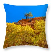 Fall In Zion Throw Pillow
