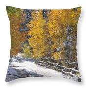 Fall Into Beartrap Meadow - Casper Mountain - Casper Wyoming Throw Pillow