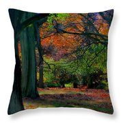 Fall Is Coming Throw Pillow