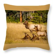Fall Is Family Time Throw Pillow