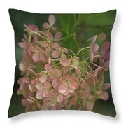 Fall Is Near Throw Pillow