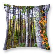 Fall Ivy In Pine Tree Forest Throw Pillow