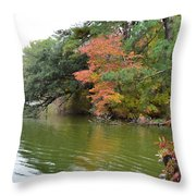 Fall Landscape Around The Lake 2 Throw Pillow